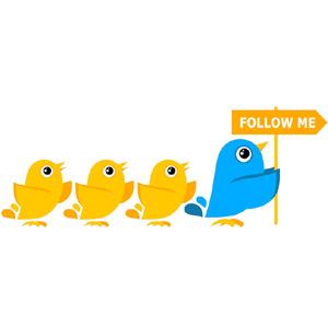 conseguir seguidores en Twitter con intereses en comun