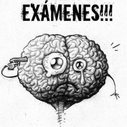 Tranquilidad, la mejor manera de rendir un examen final en la facultad