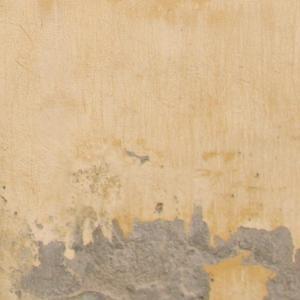 sacar la humedad de las paredes