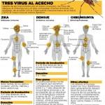 Prevenir el Zika y el Dengue