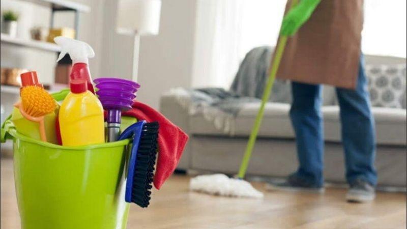 servicio doméstico anses