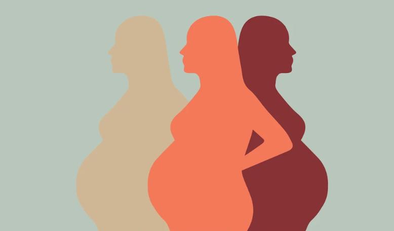 Embarazo para protección social anses