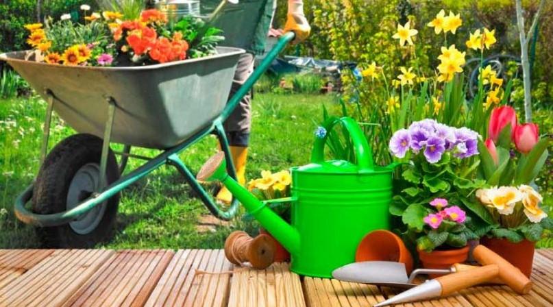La jardinería entra en servicio doméstico